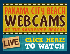 live panama city beach fl webcams