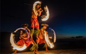 Live Polynesian Show