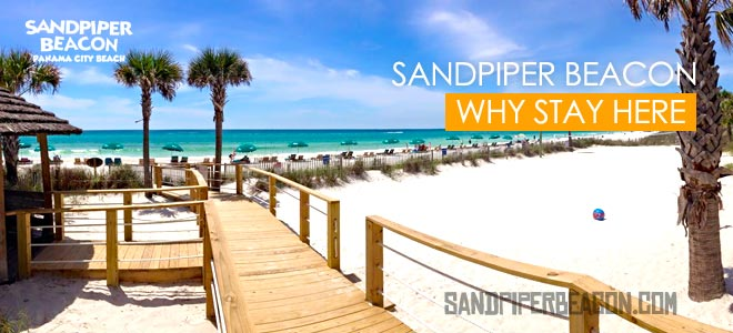 Why Should You Stay at the Sandpiper Beacon Beach Resort